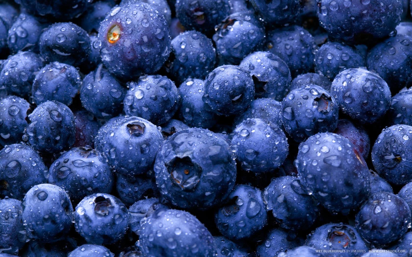 Blueberry, o Melhor alimento para os Olhos